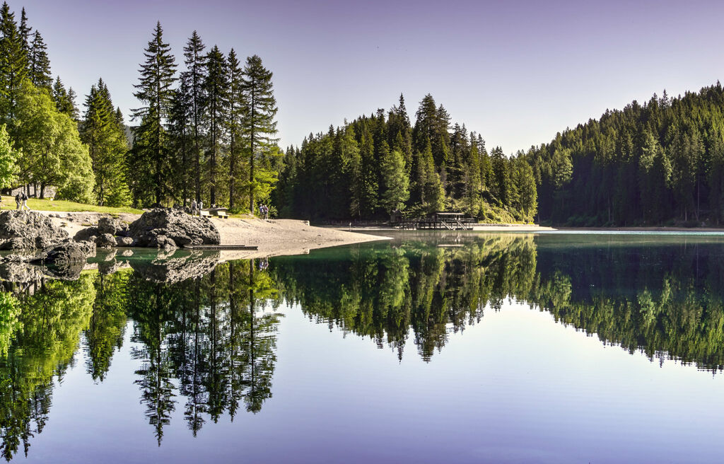 Winter trail, lake with fir forest