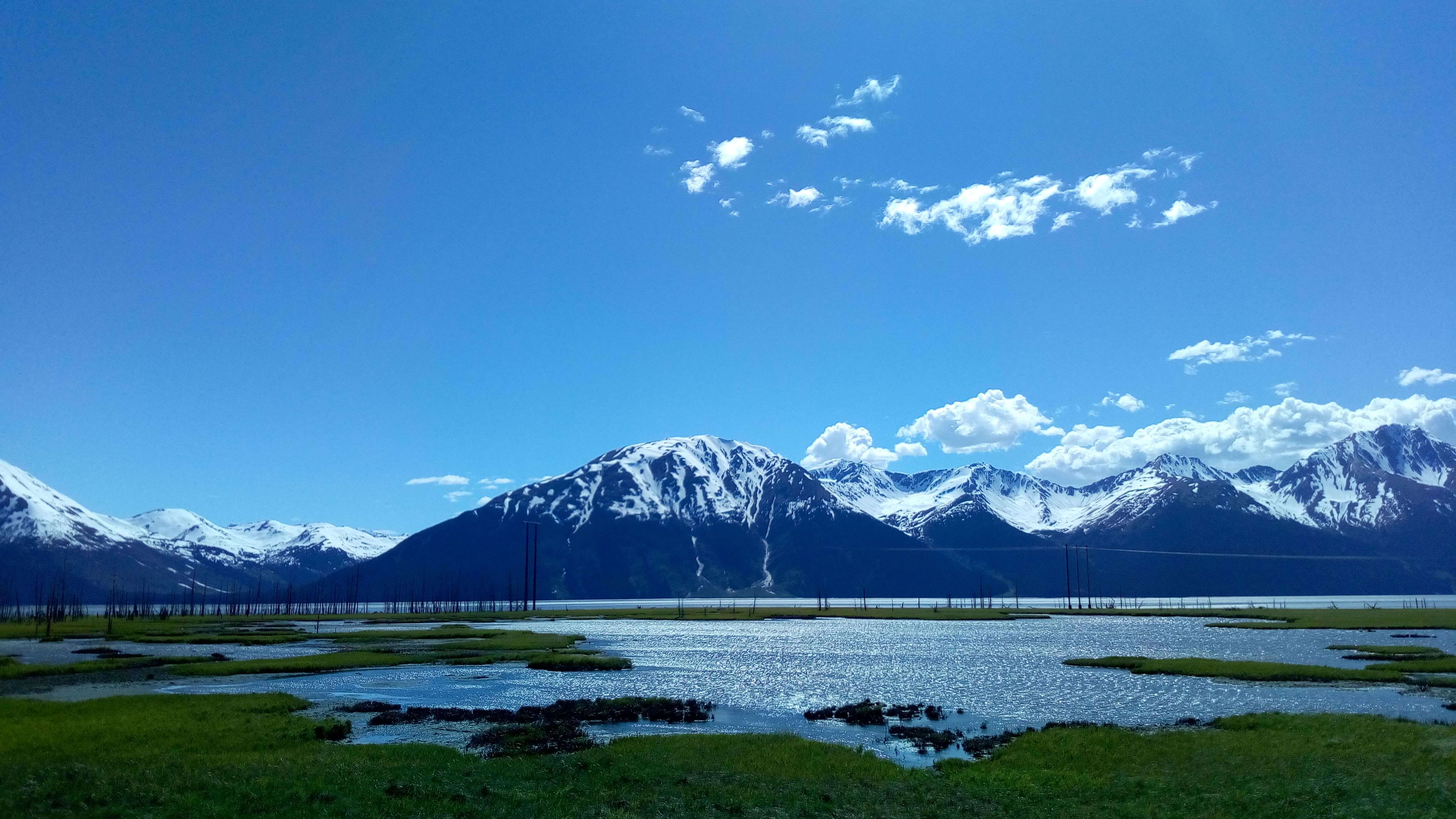 green grass bordering a broad waterway with snowy mountains in the backround, turnagain arm, alaska
