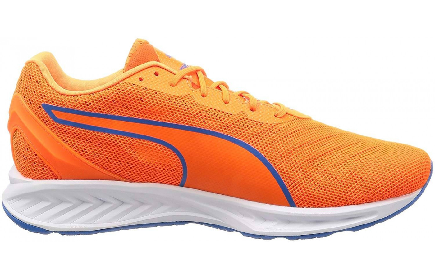 This shoes comes in bright, stylish color options.