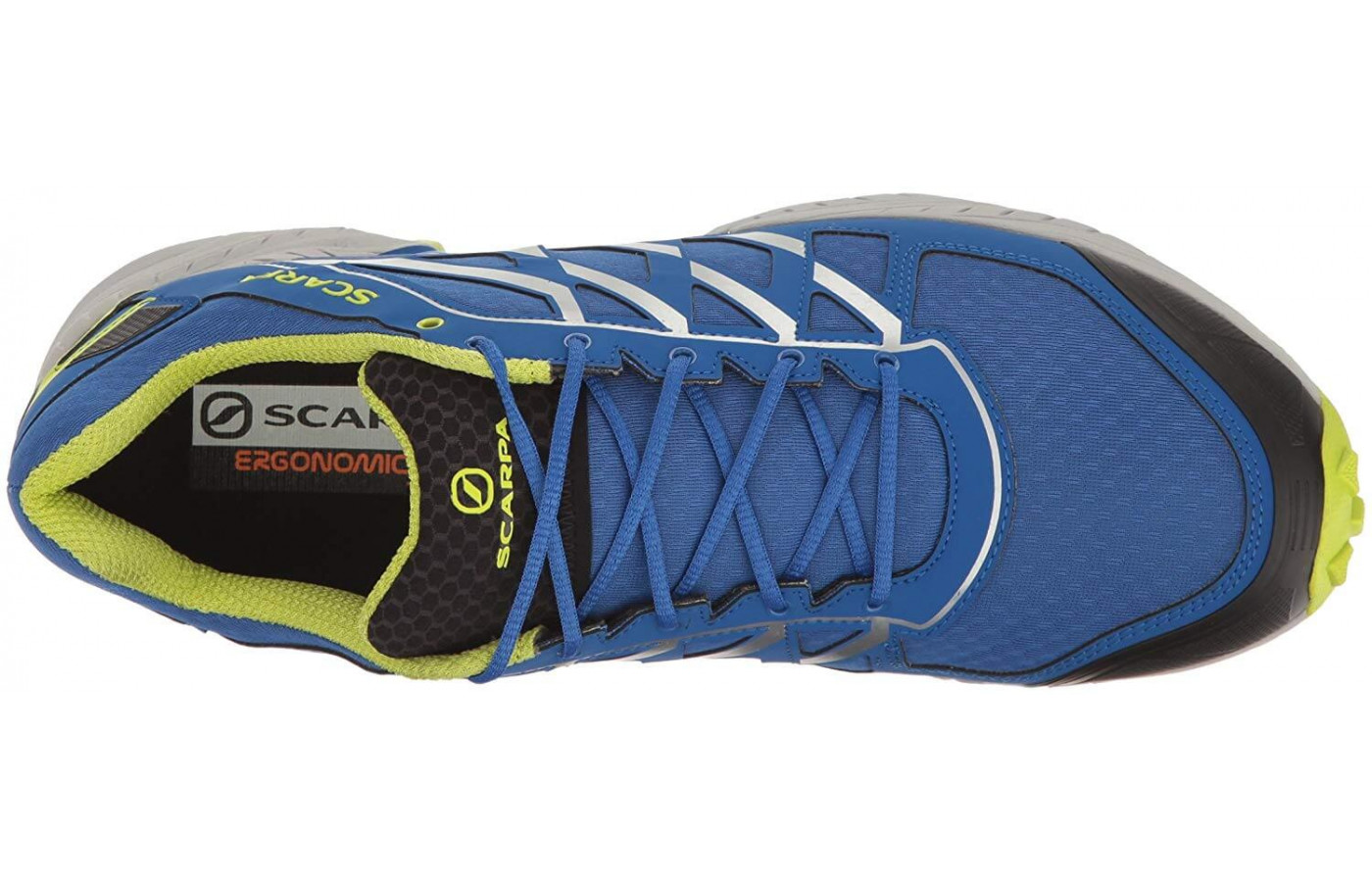Scarpa Neutron Top