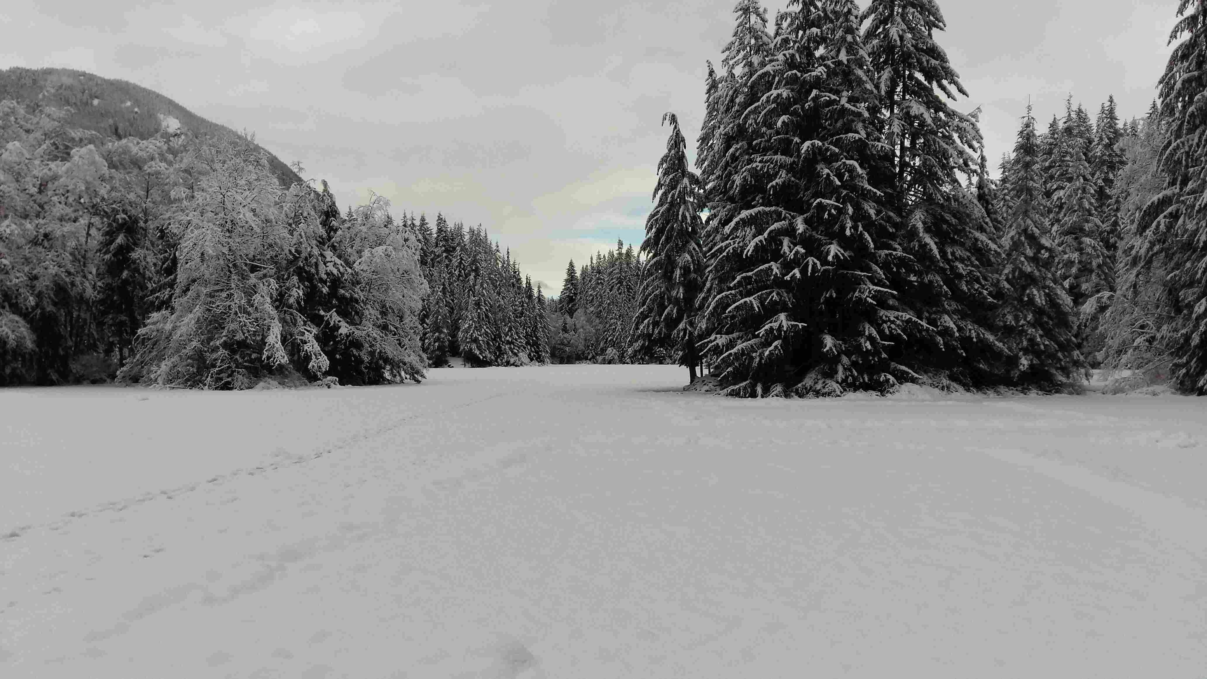 Rice lake, north Vancouver winter trail