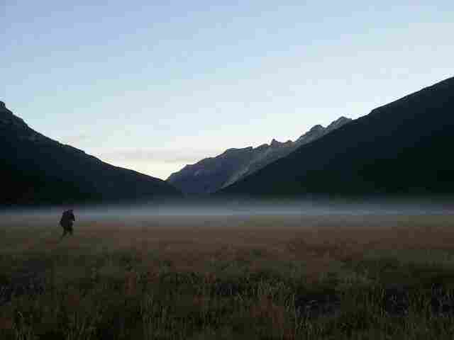 Hiker walking through a misty meadow at dawn. Rees Dart Track, New Zealand