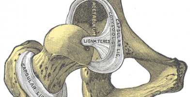 An in depth runners guide and article to Labral Tears