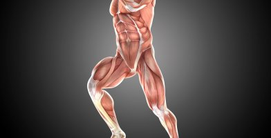 An in depth and comprehensive Runner's Guide Impingement