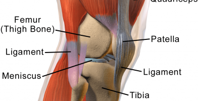 an in depth injury article on Patellar Tendonitis for runners