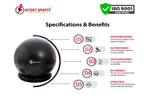 INTENT SPORTS Ball with Base details 2