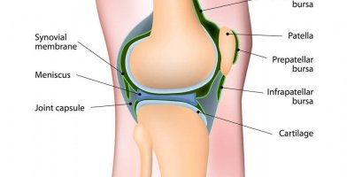 An in depth and comprehensive Runner's Guide to Synovitis