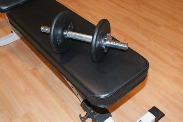 best weight benches