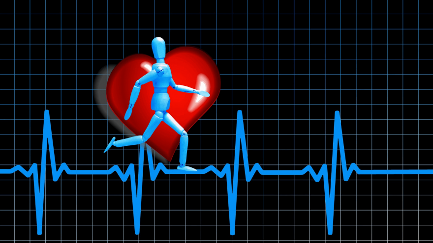 Is a very low resting heart rate a badge of honor or a potential health risk?