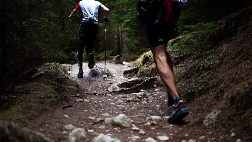 What are trekking poles and do you need them?