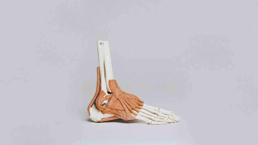 Plantar fasciitis and peroneal tendinitis are both common foot injuries related to running overuse.