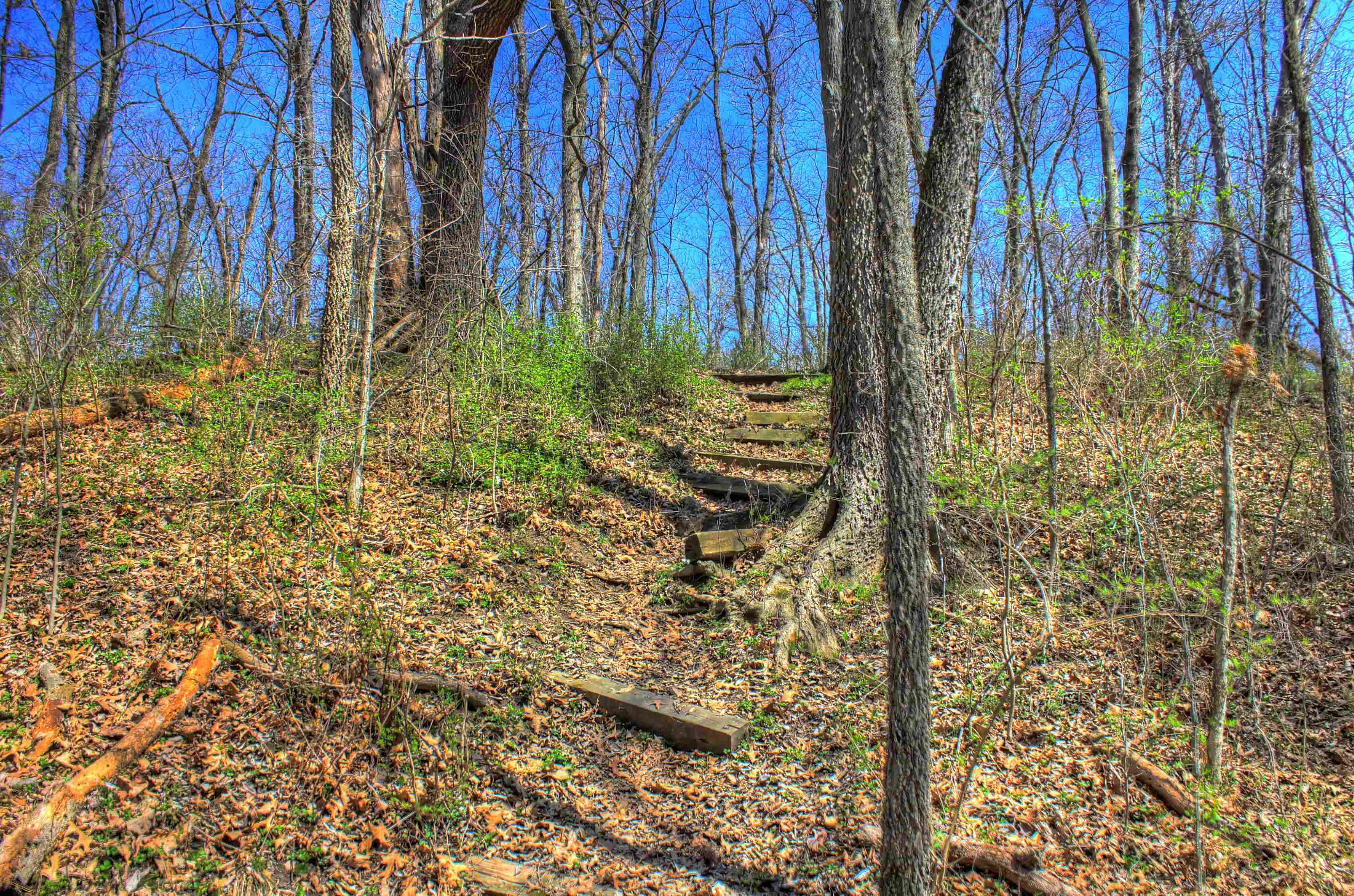 sangchris-lake-state-park-steps-up-the-hiking-trail