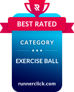 10 Best Exercise Balls Tested & Fully Reviewed